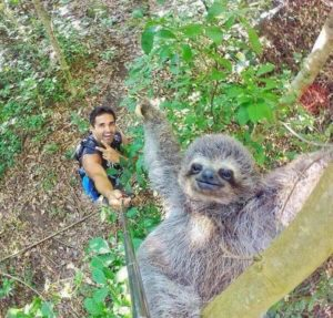 This picture almost makes selfie sticks okay. Almost. Sloth selfie